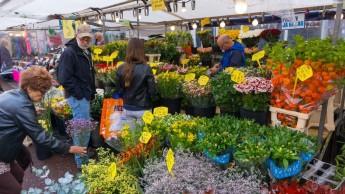 Flower Market (Amsterdam)